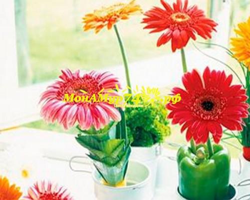 Какие цветы дарить детям?
