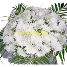Хризантемы букет 12
