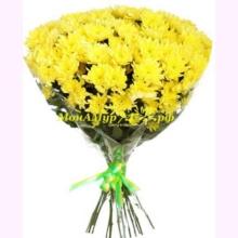 Хризантемы букет 15