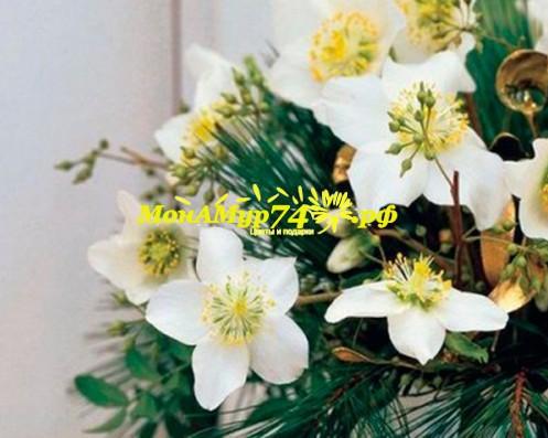 Как выбрать цветы на свадьбу
