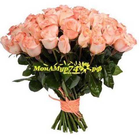 Ация 25 цветов Пич абадэ