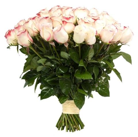 Букет из 25 цветов «Свитнес»